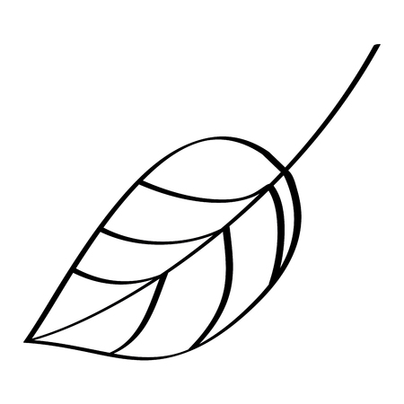 leaf foliage botany frond natural icon vector illustration outline design