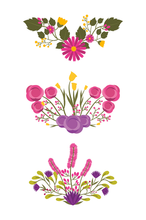 set of detailed beautiful bunches of flowers vector illustration
