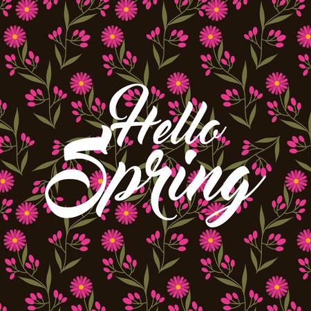 Pink daisy flowers petals hello spring black background vector illustration Illustration