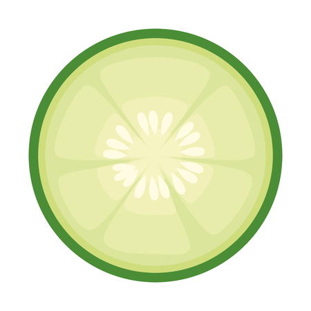 Cucumber slices icon over white background vector illustration