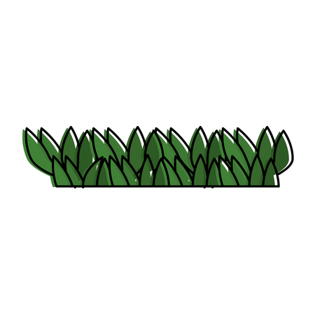 Grass field isolated icon vector illustration design