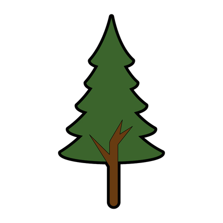 pine tree plant isolated icon vector illustration design Illusztráció