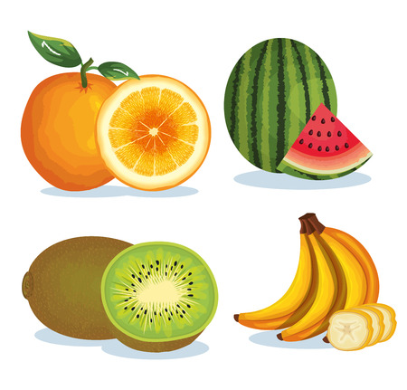 Set tropical and exotic fruits vector illustration design