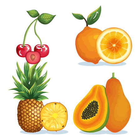 Set tropical and exotic fruits vector illustration design.