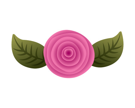 decorative pink rose with leaves top view vector illustration Illustration