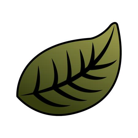 natural foliage leaf botanical icon vector illustration Archivio Fotografico - 96500636