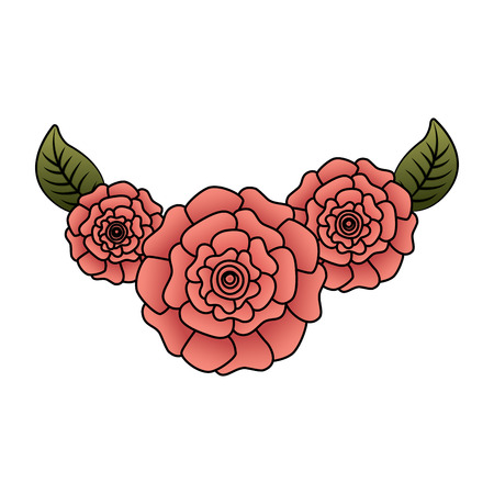 cute fresh natural flowers carnation leaves vector illustration