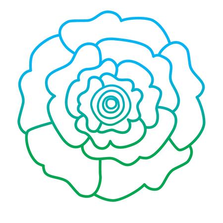 장식 자연 카네이션 꽃 상위 뷰 벡터 일러스트 레이 션 라인 컬러 디자인을 저하