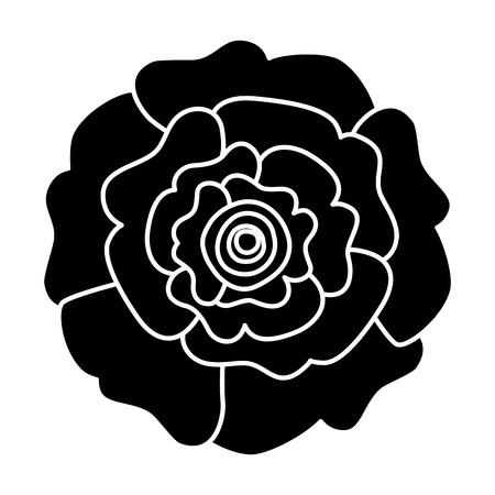 장식 자연 카네이션 꽃 상위 뷰 벡터 일러스트 픽토그램 디자인
