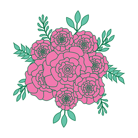bunch flowers carnation leaves oranement vector illustration pink and green design
