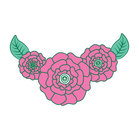 cute fresh natural flowers carnation leaves vector illustration pink and green design Ilustração