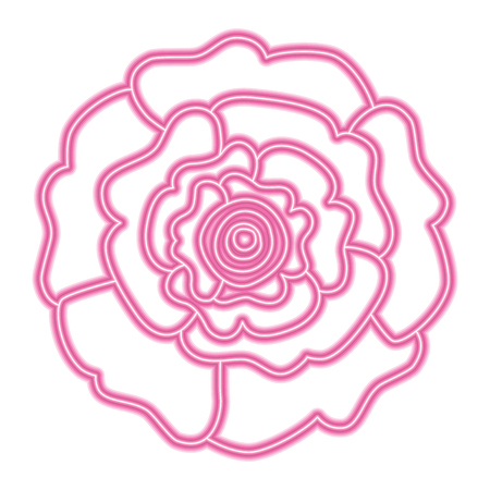 decorative natural carnation flower top view vector illustration neon pink and green line design Иллюстрация