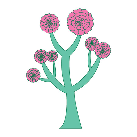 beautiful tree with flowers carnation decoration vector illustration pink and green design