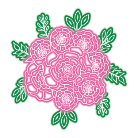 bunch flowers carnation leaves oranement vector illustration neon pink and green line design