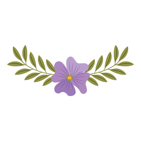 Cute flower periwinkle and branch with leaves foliage decoration vector illustration.