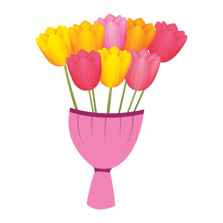 Elegance delicate bouquet tulips flowers wrapped vector illustration.