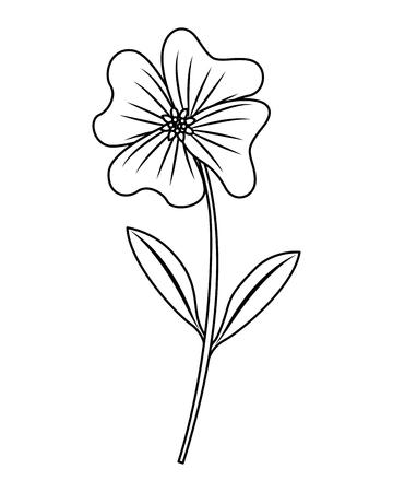 Cute flower periwinkle petals leaves stem icon vector illustration outline design Illustration