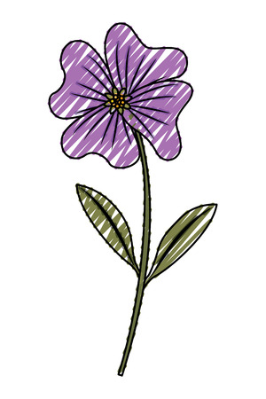 cute flower periwinkle petals leaves stem icon vector illustration drawing image