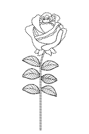 Delicate flower rose stem leaves nature decoration vector illustration dotted line image Illustration