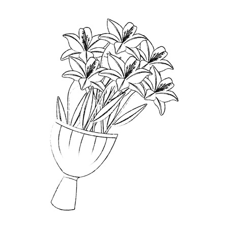 Elegance delicate bouquet lilies flowers wrapped vector illustration sketch image