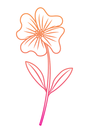 Cute flower periwinkle petals leaves stem icon vector illustration degrade color line image Ilustração