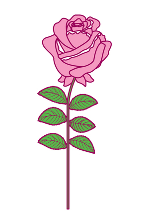 A delicate flower rose stem leaves nature decoration vector illustration pink and green image