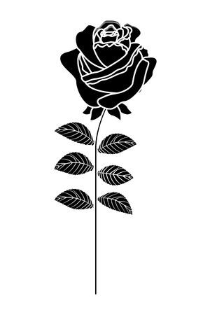 A delicate flower rose stem leaves nature decoration vector illustration black image