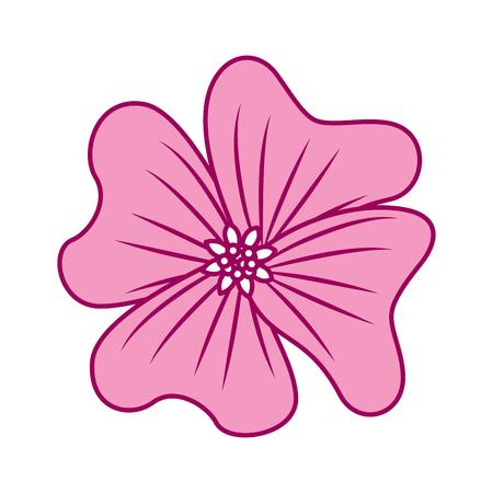 A flower periwinkle delicate decoration floral nature petals vector illustration