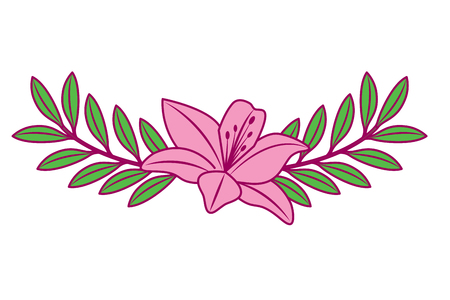 A cute flower lily and branch with leaves foliage decoration vector illustration pink and green image