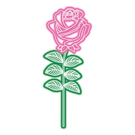 Delicate flower rose stem leaves nature decoration vector illustration neon pink and green line image