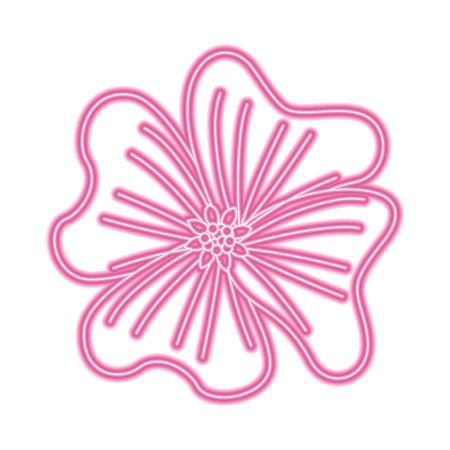 flower periwinkle delicate decoration floral nature petals vector illustration neon pink line image Illustration