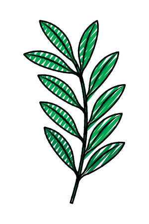 green branch leaves nature foliage vector illustration drawing image Illustration