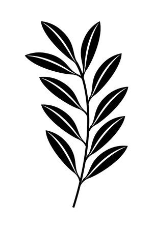 branch leaves nature foliage vector illustration black and white design