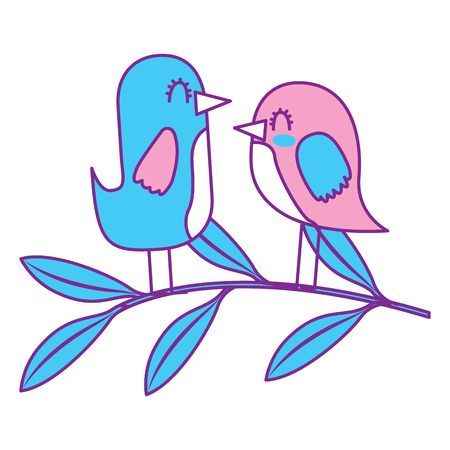 cute couple birds together in tree branch vector illustration pink and blue design