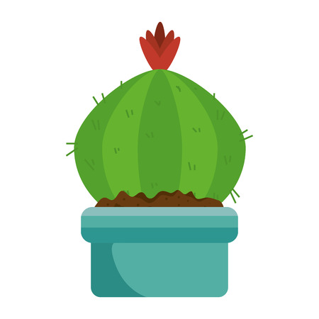beautiful cactus houseplant in pot vector illustration design Imagens - 96617500