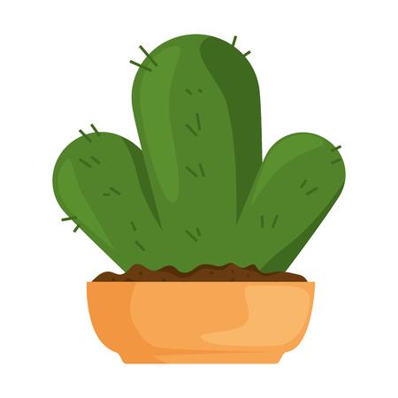 beautiful cactus houseplant in pot vector illustration design