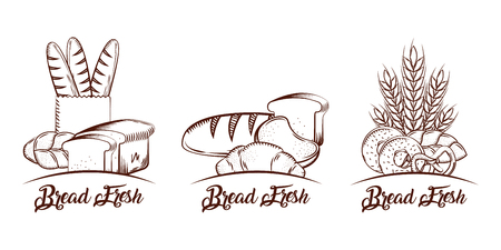 Bread collection products food bakery sketch vintage vector illustration
