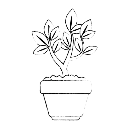 beautiful bonsai houseplant in pot vector illustration design Фото со стока - 96574782