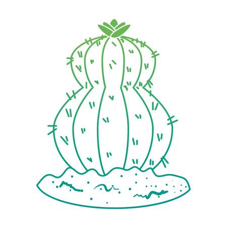beautiful cactus planted icon vector illustration design Illustration