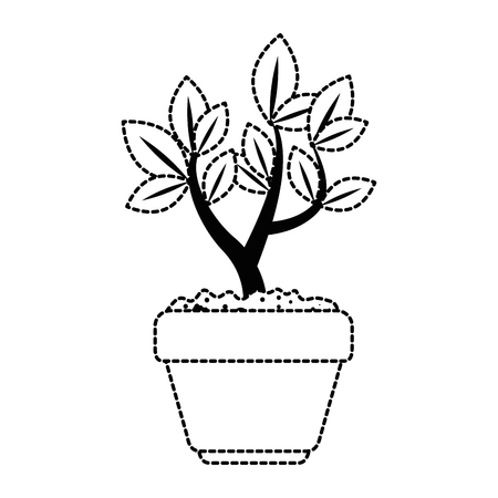 beautiful bonsai houseplant in pot vector illustration design Фото со стока - 96575802