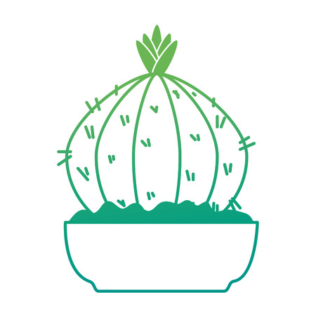 beautiful cactus houseplant in pot vector illustration design Imagens - 96575813