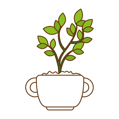 Beautiful bonsai houseplant in pot vector illustration design.