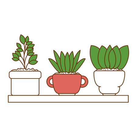 beautiful houseplants set in wooden shelf vector illustration design