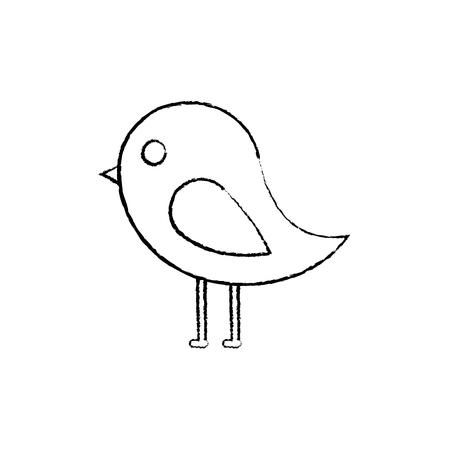 bird cartoon icon image vector illustration design  black sketch line