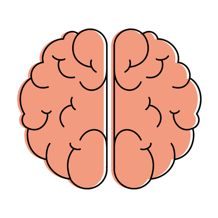 Brain isolated icon vector illustration design