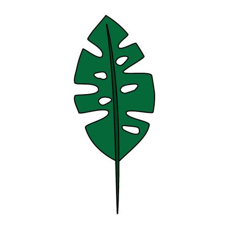 tropical leaf icon image vector illustration design