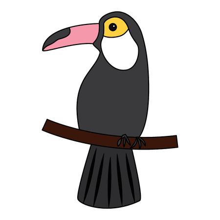 Toucan bird tropical icon image vector illustration design Illustration