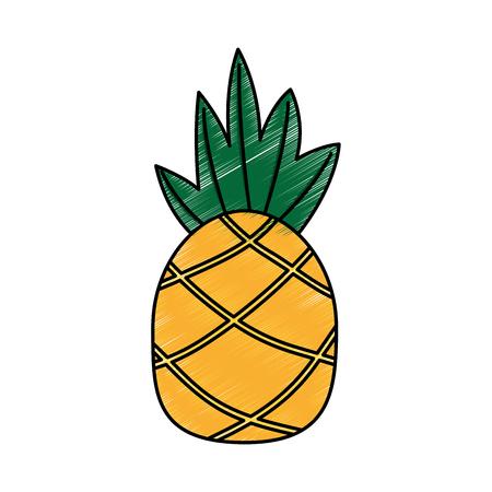 Pineapple fruit icon image vector illustration design