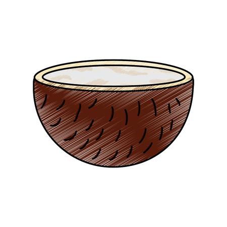Coconut half fruit icon image vector illustration design