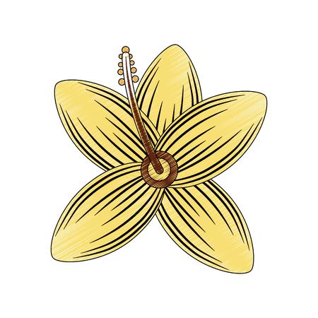 flower wild icon image vector illustration design Illustration